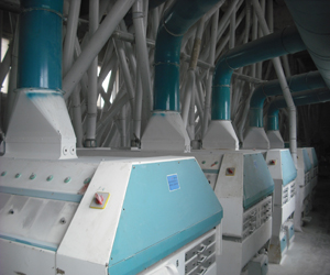 250t corn flour mill