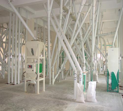 500t flour project