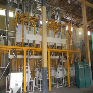 complete flour mill plant