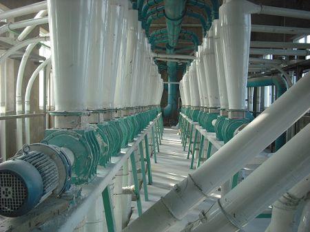 250t flour milling project