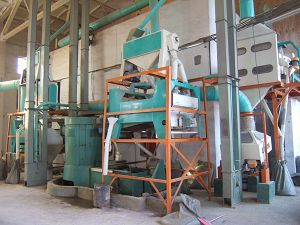 cleaning section of flour plant
