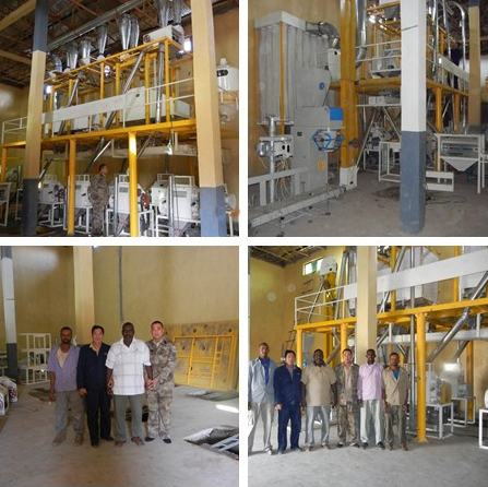 Buying Flour Milling Machine