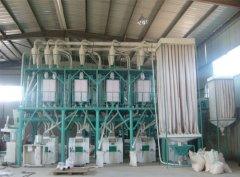 Trace Back Flour Milling History
